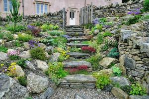 Kivikkopuutarha sopii usein suomalaisiin olosuhteisiin (Kuva: Wildroof CC BY 2.0)